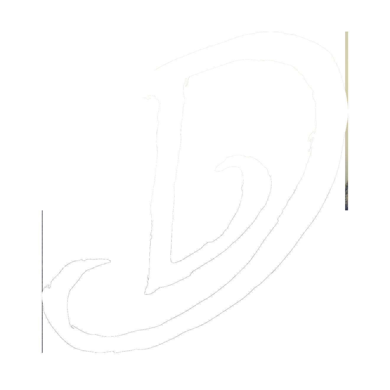D'LIRIUS