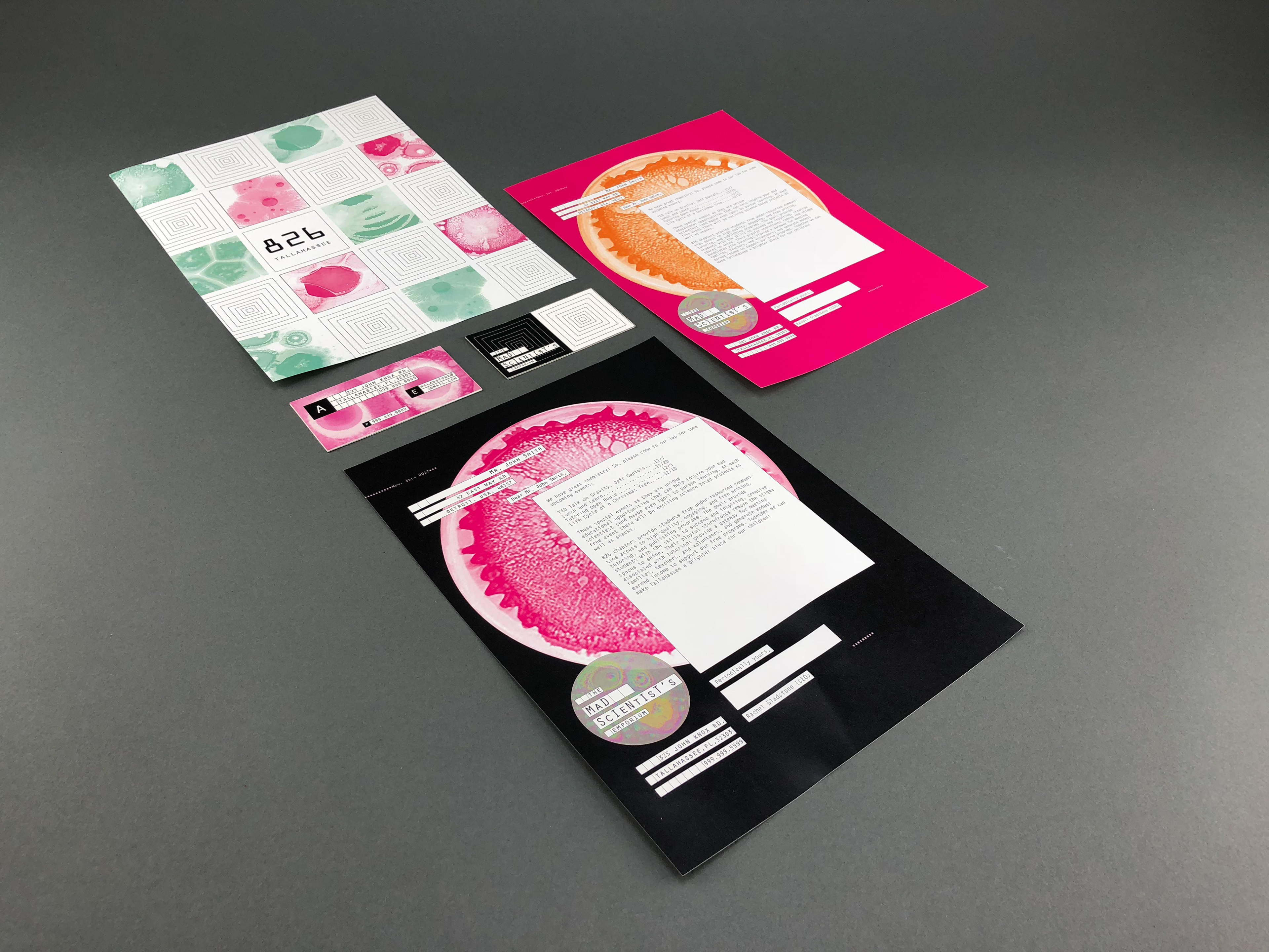 Rachel gladstone 826 tallahassee florida branding letterheads envelopes business cards and online presence colourmoves