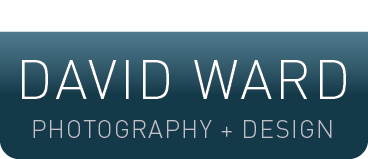 The Creative Ward