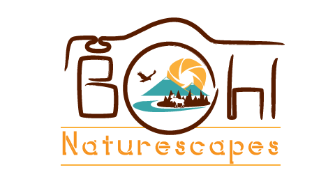 BohlNaturescapes