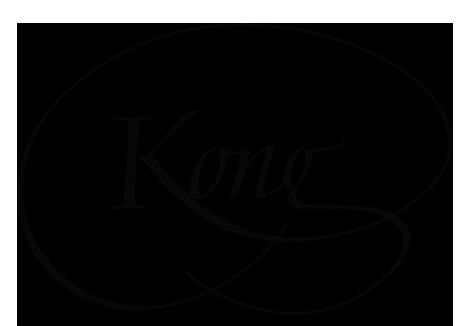 Kongnection Graphics