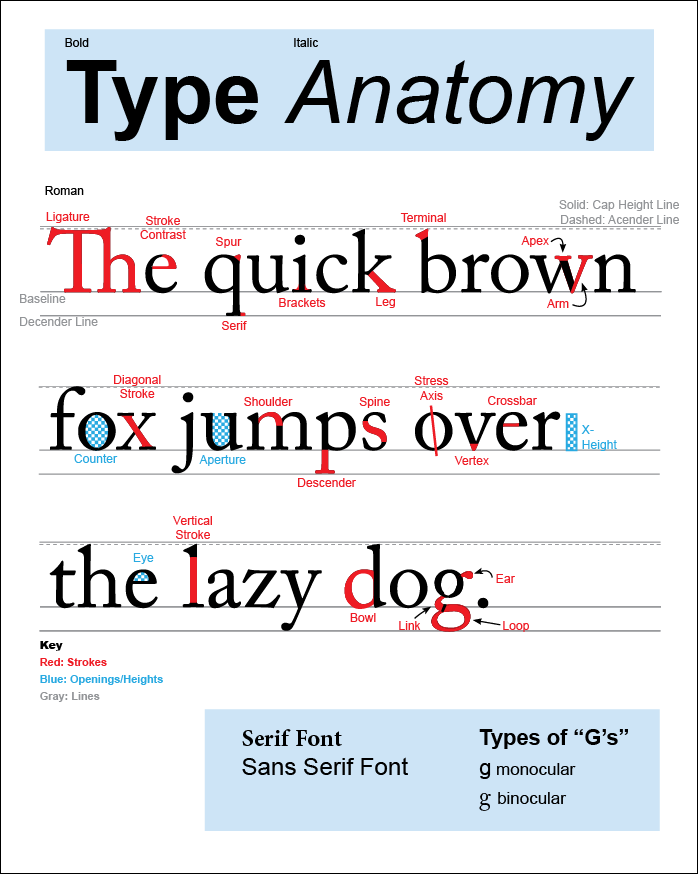 Ashley Warner Typeface Anatomy And Identification