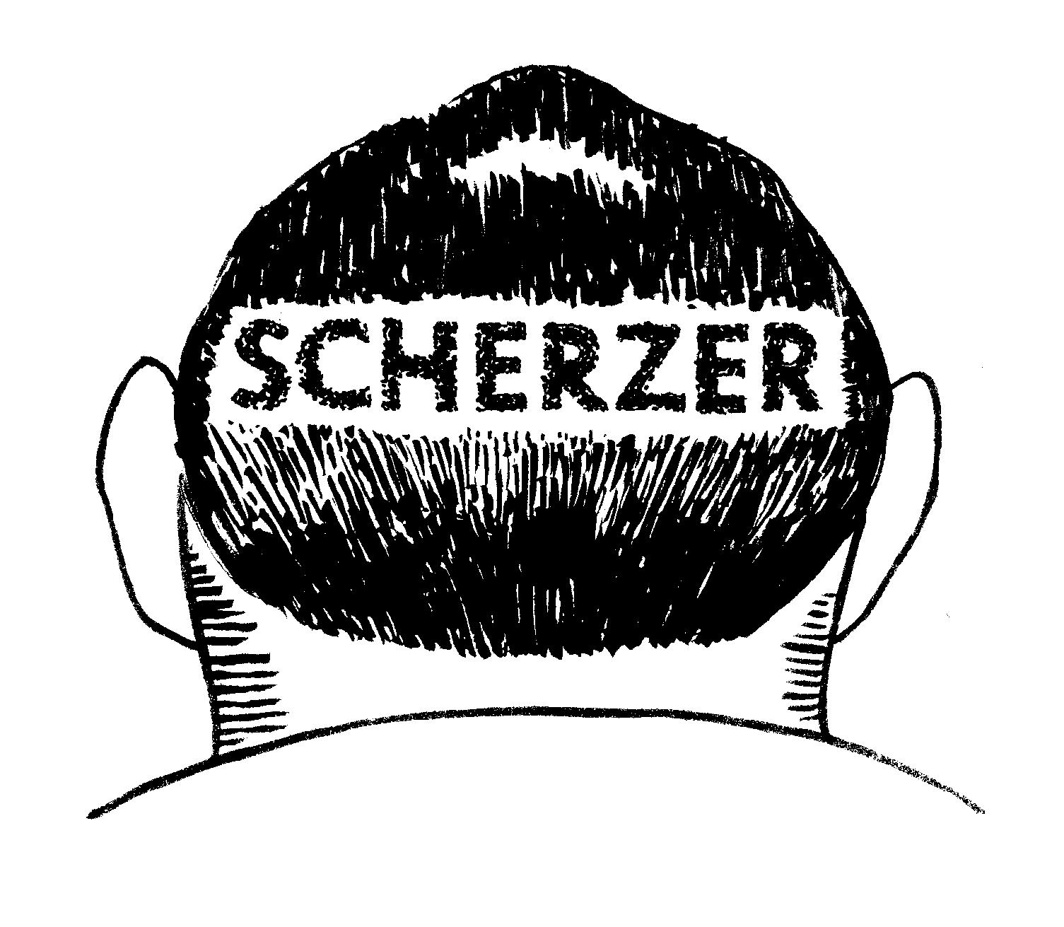 joel Scherzer