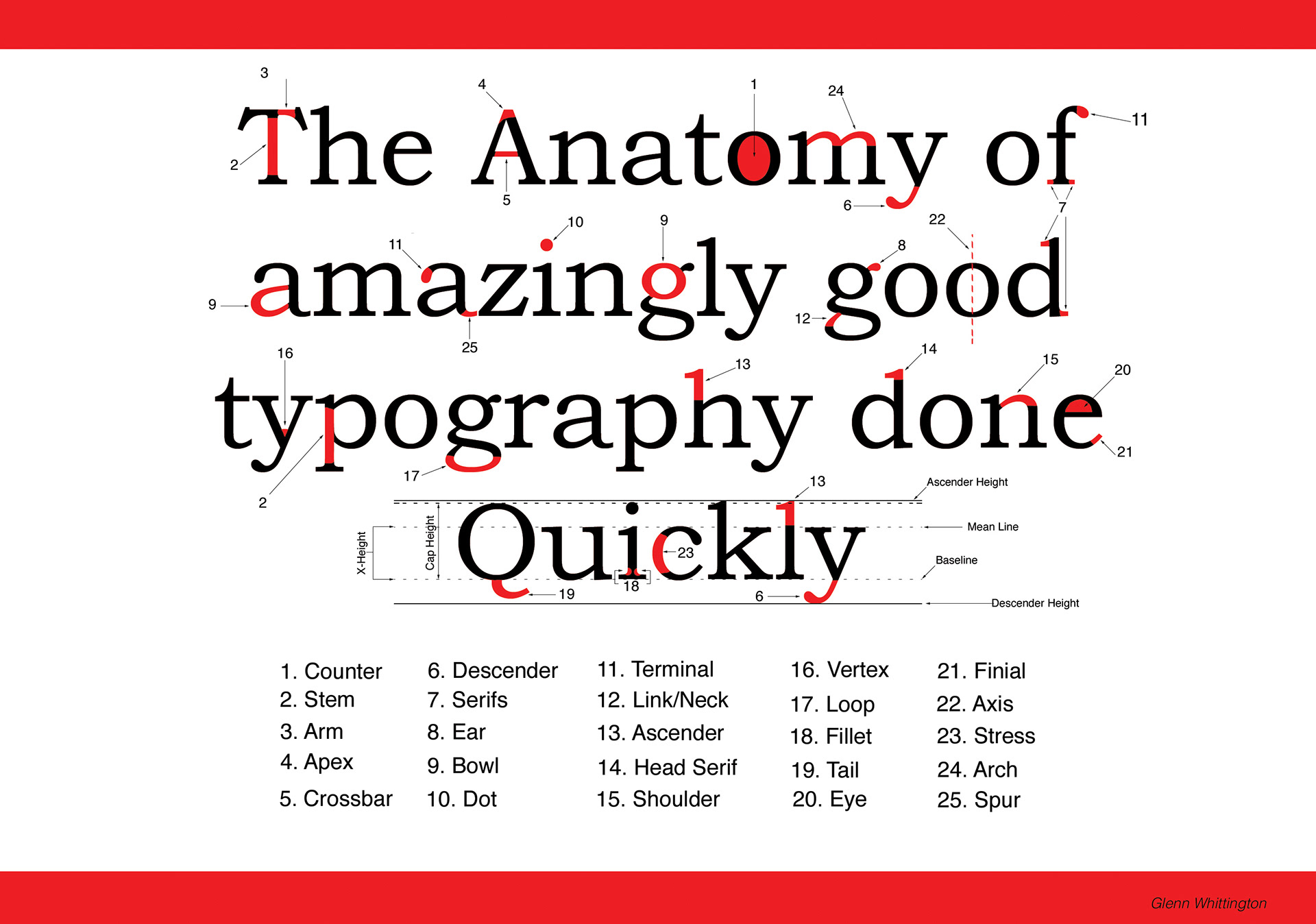 Anatomy Of Type College Project