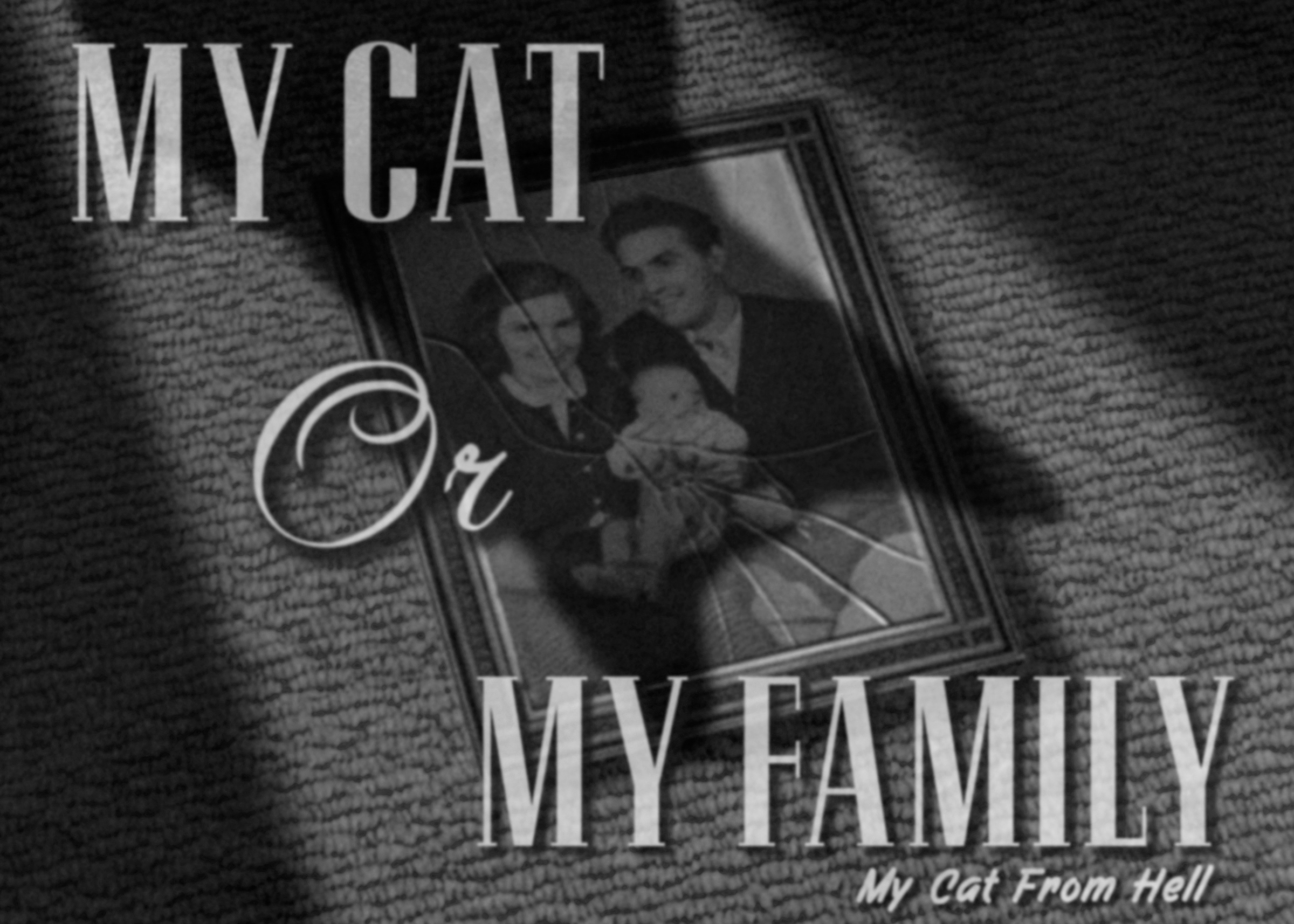 Penney Design My Cat From Hell Film Noir Title Cards