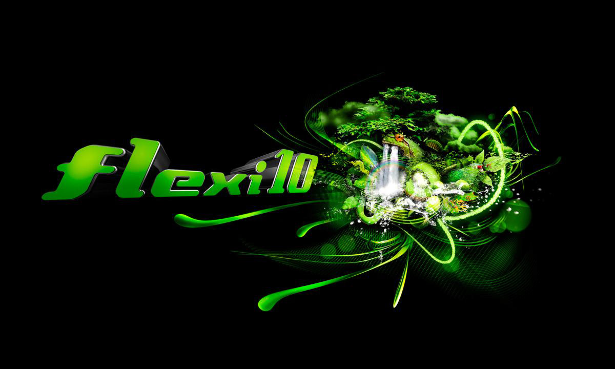 Brandon Tyson - Flexi 10 Brand Concept