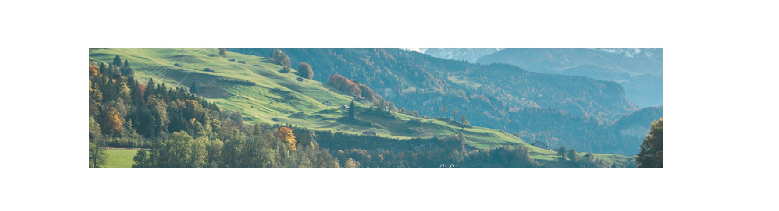 francois PEYRANNE