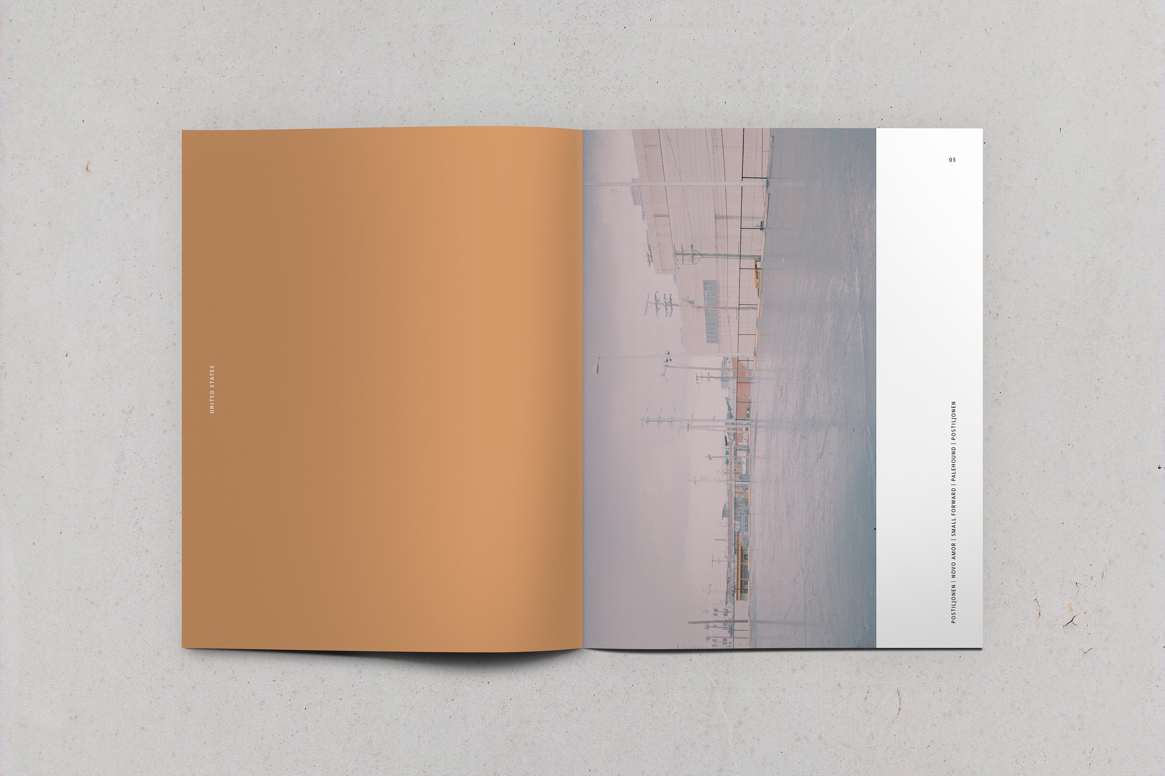 Qinglu Guo Buds Magazine