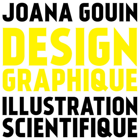 joana gouin