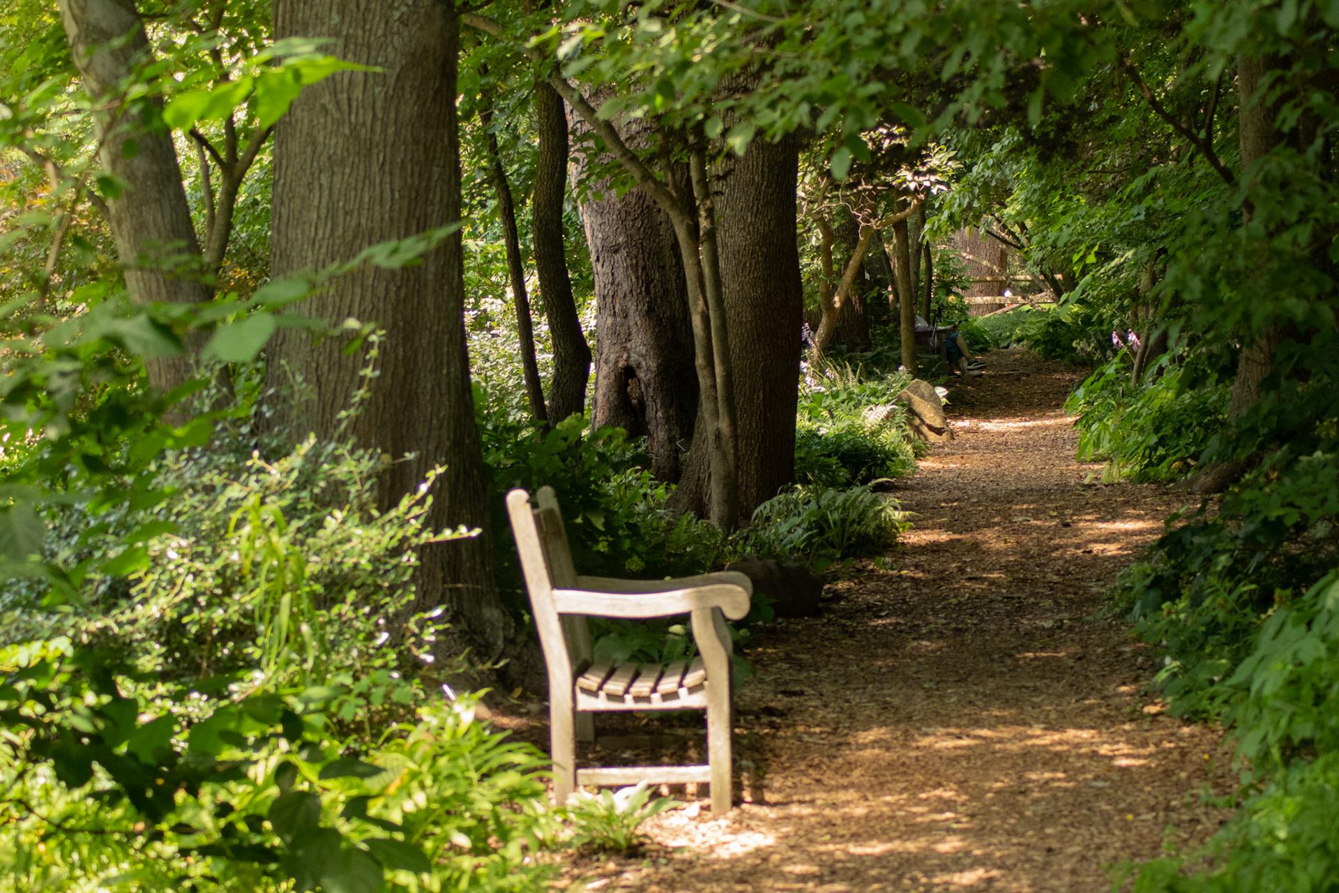 Jennifer Hall - Meadowlark Botanical Gardens